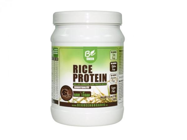 Veganes Reisprotein Geschmack Cacao 500g