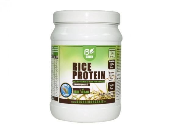 Veganes Reisprotein Geschmack Natur 500g